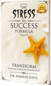 Stress to Success Bookcover with bestseller seal